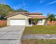 15825 Country Lake Drive, Tampa image