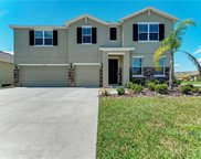 15206 Trinity Fall Way, Bradenton image