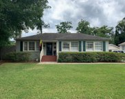 1434 PINETREE RD, Jacksonville image
