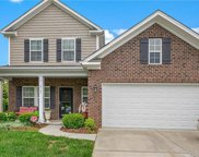 6725  Barefoot Forest Drive, Charlotte image