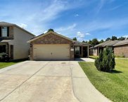10051 Meadow Mill Forest Lane, Houston image