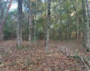 Lot 14 Mohican Dr., Georgetown image