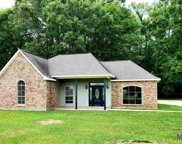38275 Little Woods Dr, Denham Springs image