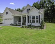 1176 Old Field Drive, Summerville image