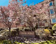 7531 Minoru Boulevard Unit 119, Richmond image