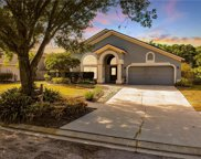 9220 Sunnyoak Drive, Riverview image