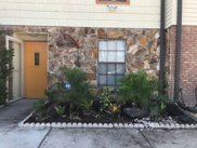 3913 N Carroll Pines Court, Tampa image