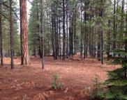 13369 Hawksbeard, Black Butte Ranch image