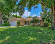 10510 Cook Lake Court, Leesburg image