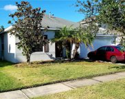 20264 Merry Oak Avenue, Tampa image