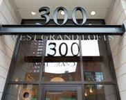 300 W Grand Avenue Unit #212, Chicago image