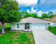 11226 Fiddlewood Drive, Riverview image