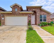 2132 Elrington Willow Drive, Pearland image