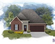 24225 Cliftmere Ave, Plaquemine image