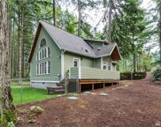 10124 Eagle Place, Anderson Island image