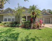 12016 Meridian Point Drive, Tampa image