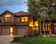 9244 Ritenour Court, Lone Tree image