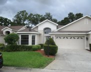 9225 Green Pines Terrace, New Port Richey image