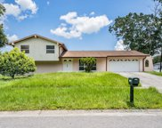 4319 Autumn Leaves Drive, Tampa image