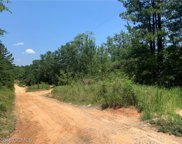 8650 Countryview, Wilmer, AL image