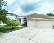 1120 Fennel Green Drive, Seffner image