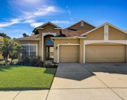 11424 Crisfield Place, New Port Richey image