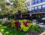 1071 West 15Th Street Unit 356, Chicago image
