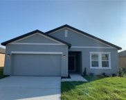 16407 Blooming Cherry Drive, Groveland image
