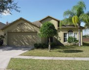 3217 Downan Point Drive, Land O' Lakes image