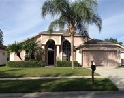18012 Palm Breeze Drive, Tampa image