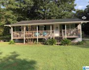 2127 Pleasant Valley Rd, Odenville image