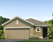 9103 Water Chestnut Drive, Tampa image