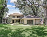 1199 SALT CREEK ISLAND DR, Ponte Vedra Beach image