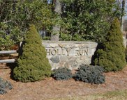 TBD Holly Run, Glade Valley image