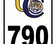 790 Thomas Boyd Dr, Baton Rouge image