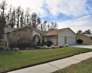 5832 Rosemere Drive, Palm Harbor image