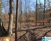 325 Charnell Drive Unit Tract 2 - 5 Acres, Ashville image