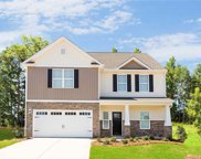 620 Pawnee  Court, Fort Mill image