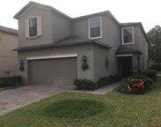 20026 Date Palm Way, Tampa image