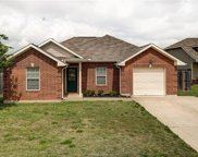 2709 Horse Haven, College Station image
