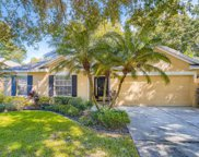 2110 Fawn Meadow Drive, Valrico image