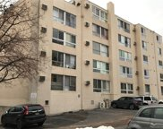 1390 N Emerson Street Unit 207, Denver image