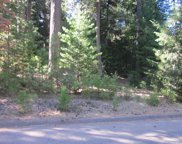 10141  GRIZZLY FLAT ROAD, Grizzly Flats image
