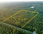 TBD52Acres Hwy 20 East, Freeport image