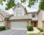 8722 Crystal Creek Drive, Orland Park image