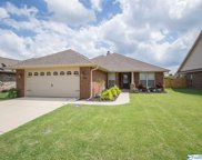 24604 Silent Spring Drive, Athens image