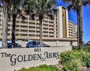 601 N Atlantic  Avenue Unit 2060, New Smyrna Beach image