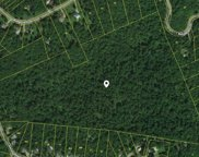 1230 Simms Heights Rd, Kingston Springs image