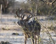 16132 B Fm 500, Richland Springs image