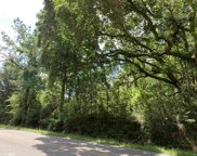 15824 Pine Grove Rd Ext N, Bay Minette image